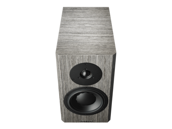 Dynaudio Special Forty - Grey Birch